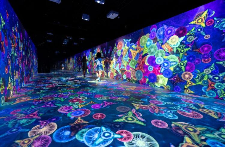 Imersão em ambientes lúdicos e escalas paradoxais inspiram instalação no Museu do Amanhã, no Rio. Imgem em render da expossição grafica