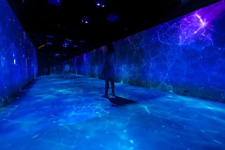 Imagem em render da exposição grafica no museu do amanhã