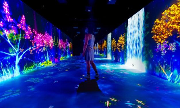Imersão em ambientes lúdicos e escalas paradoxais inspiram instalação no Museu do Amanhã, no Rio