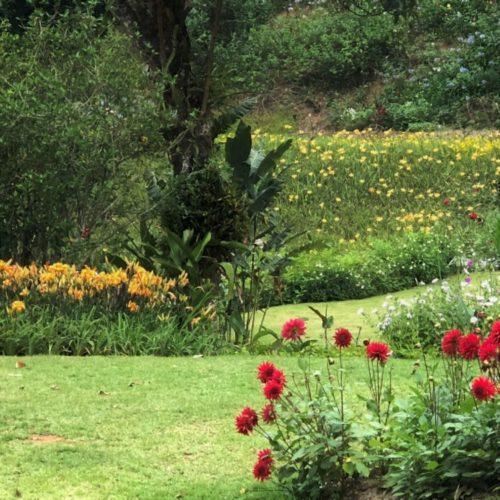 Jardim com canteiros de flores vermelhas e amarelas