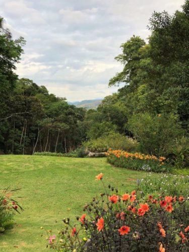 Jardins em Secretário, na serra fluminense. Canteiros de flores e arvores