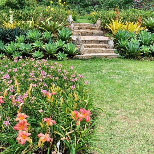 Uma escada de pedra no meio de um jardim tropical