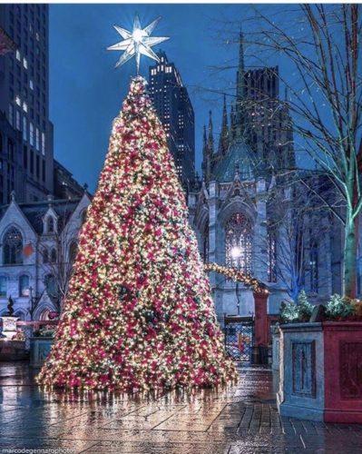 Árvore de Natal do Hotel Lotte New York Palace, em NY. Na frente da praça do hotel, bem grande iluminada