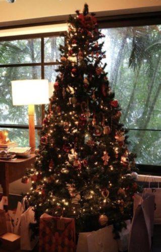 Árvore na Natal na casa do arquiteto Mauricio Nóbrega.