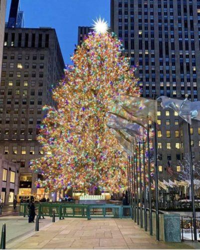Árvore na Natal do Rockefeller Center, em Nova York. Enorme e repleta de luzes amarelas no centro da praça