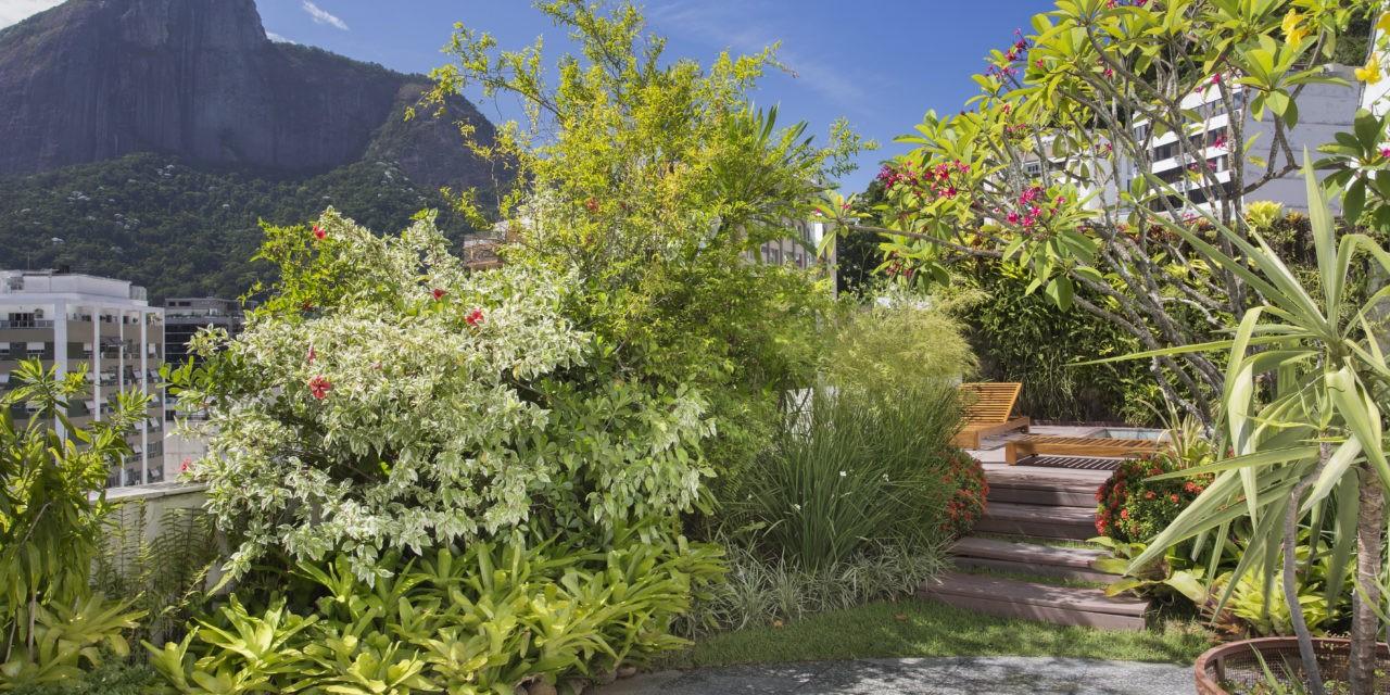 Terraço em uma cobertura linear com cara de jardim de casa