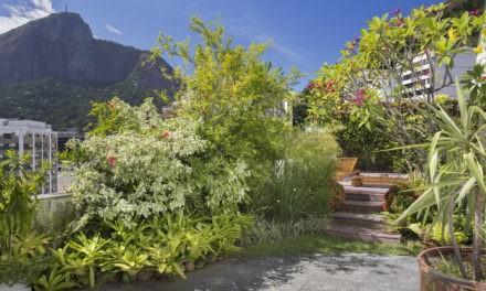 Terraço em uma cobertura com cara de jardim de casa