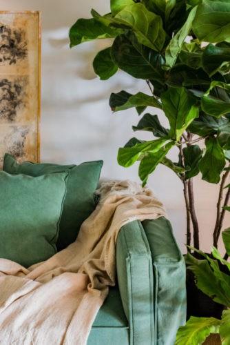 Novas formas de trabalhar. escritorio com cantinho verde, com plantas