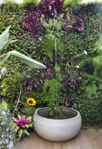 Parede revestida de plantas e uma fonte redonda