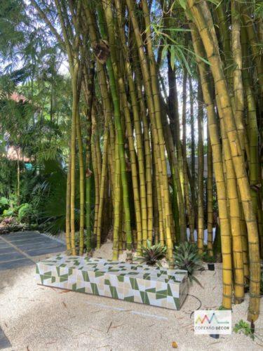 Um jardim com bambuzal e um banco de azulejos nas cores verde e branco em frente