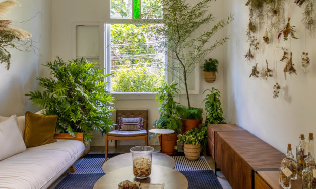 Atelier Botânico – loja carioca reabre com mostra de paisagistas e floristas