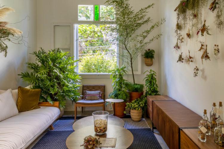 Atelier Botânico - loja carioca reabre com mostra de plantas e a participação de dez paisagistas e floristas. Sala com sofá claro e aparador de madeira, e vários arranjos de plantas