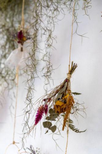 Atelier Botânico - loja carioca reabre com mostra de plantas e a participação de dez paisagistas e floristas