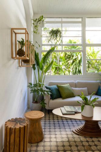 Kokedamas ( arranjo floral cm bola de musgo) dentro de caixas vazadas penduradas na parede, sala com grandes janelas.
