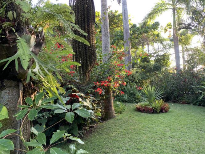 1400m2 de jardins exuberantes na Região dos Lagos no Rio. Gramado com bromélias e palmeiras