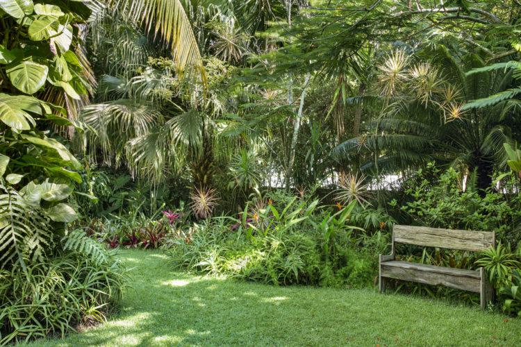 1400m2 de jardins exuberantes na Região dos Lagos no Rio. Gramado com vegetação por todos os lados e um banco de madeira