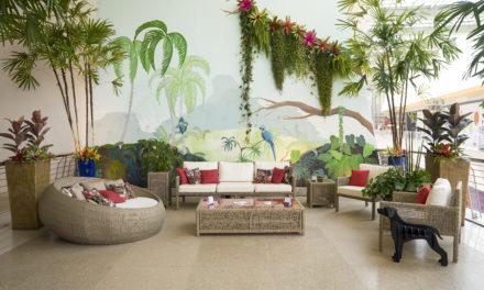 Cinco plantas práticas para adotar na decoração de casa