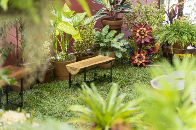 Varanda: Fênix Paisagismo e Plantas, by Fatima Costa. Gramado, um banco em tronco de arvore e muitos tipos de planta.