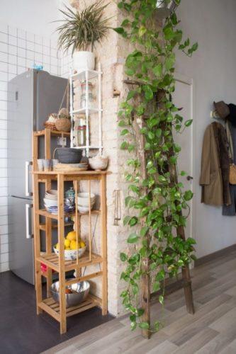 Planta pendente Jiboia na decoração da casa. Um uma coluna, presa no alto e caindo enfeitando uma escada
